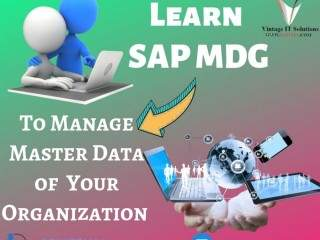 Best SAP Master Data Governance Online Training | SAP MDG Training