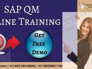 Sap business one quality management