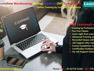 SAP, Oracle, Data Warehousing, Testing, Big data, JAVA, SEO online Training
